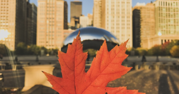 Fall in Chicago: Where to go & What to do