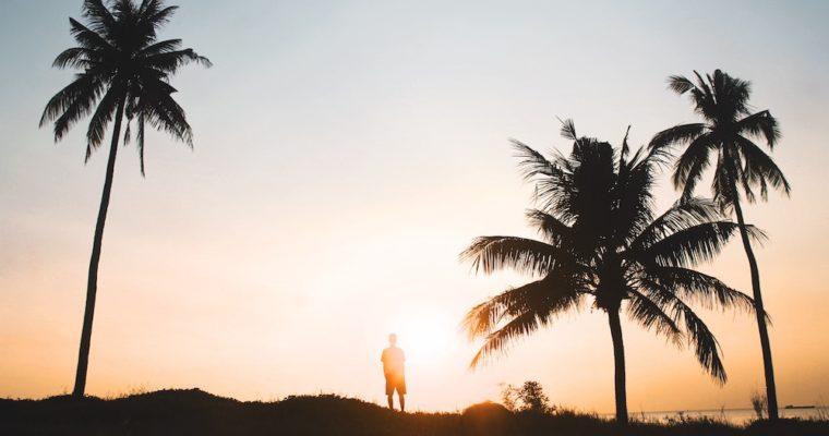 Digital Nomads & their positive outlook on career
