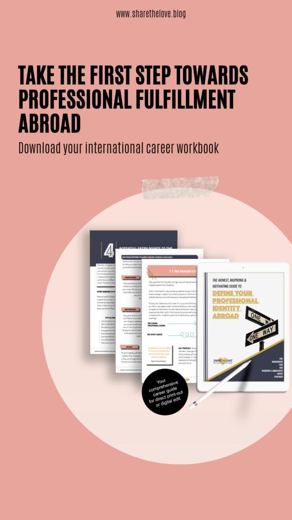 workbook, career, expat