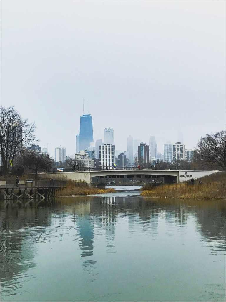 fall in chicago, chicago, city trip, travel, travel guide, autumn