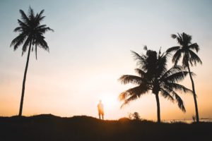 digital nomads, expat partner, survey, portable career